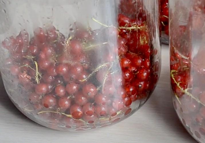 красная смородина в банке 3 литра