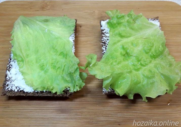 ломтик хлеба с салатными листьями