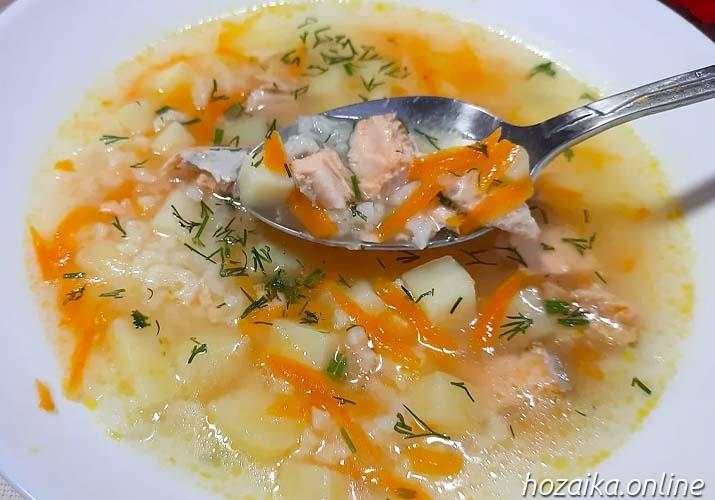 суп из кеты в тарелке